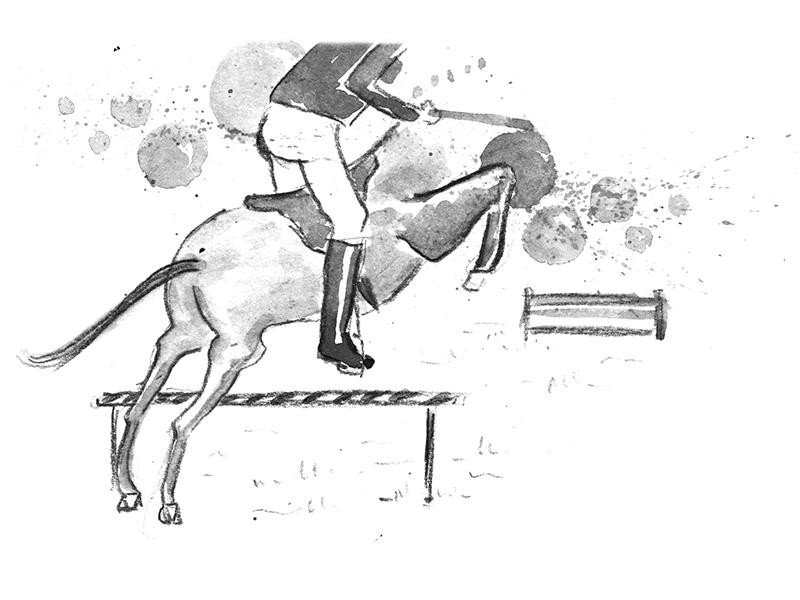 mahmoud_pferd-sprung_800x600