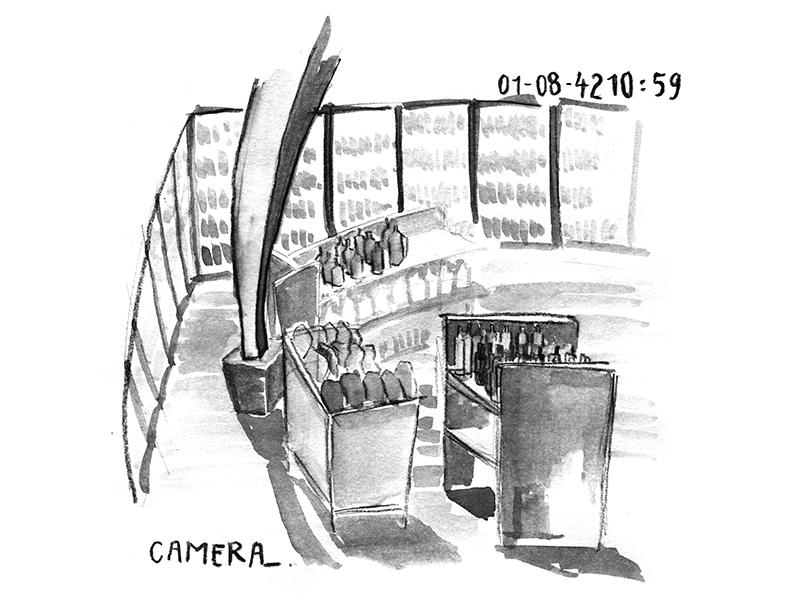 naors_camera_800x600
